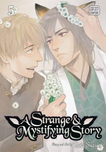 STRANGE & MYSTIFYING STORY GN VOL 05